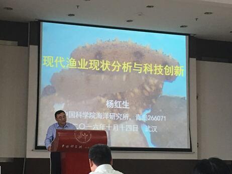 杨红生研究员报告现场