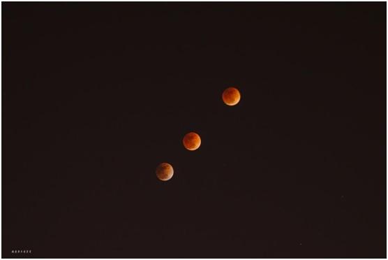 国家天文台张磊拍摄的食甚阶段的月全食